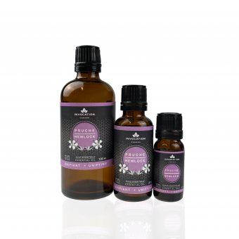 pruche canadian hemlock huile essentielle essential oil invocation